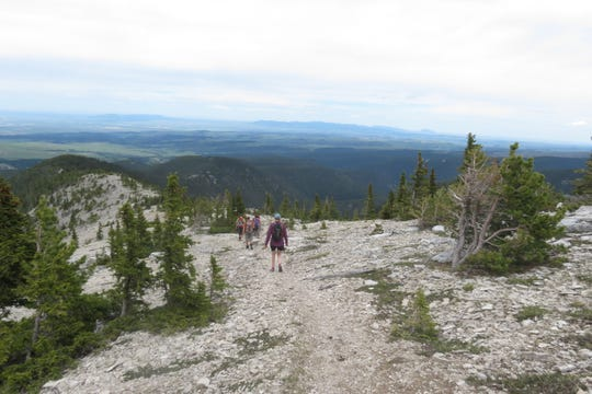 A trip to the Big Snowies is part of this year's schedule of Wilderness Walks. The Montana Wilderness Association says the walks are a great way to meet new people and get outside. Walks of all levels are available.