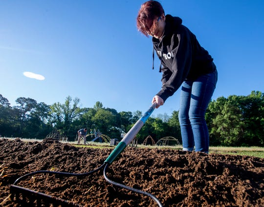 BTW student Andy Whipkey works in the school's garden in Montgomery, Ala., before school on Tuesday April 16, 2019.
