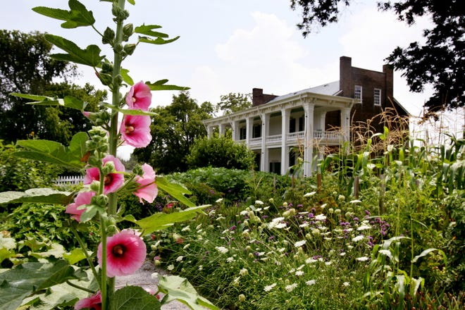Hollyhocks, at left, are among the flowers in the 1847 restored garden at Carnton Plantation in Franklin on July 30, 2008.
