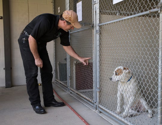Dale Hamilton, director of the Santa Rosa County Animal Shelter, checks on a dog at the shelter on Tuesday.