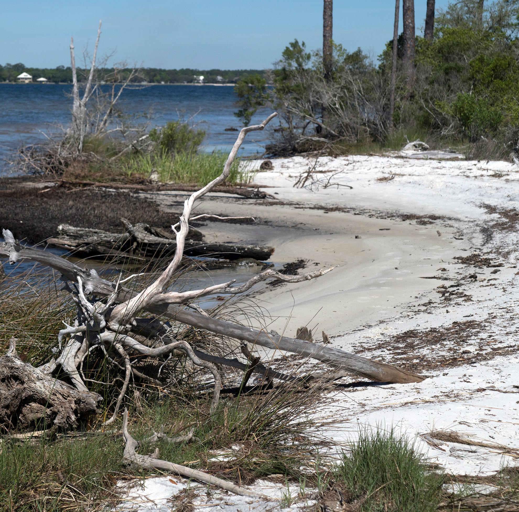 Innerarity Island lots — including waterfront parcels — up for auction by Escambia County