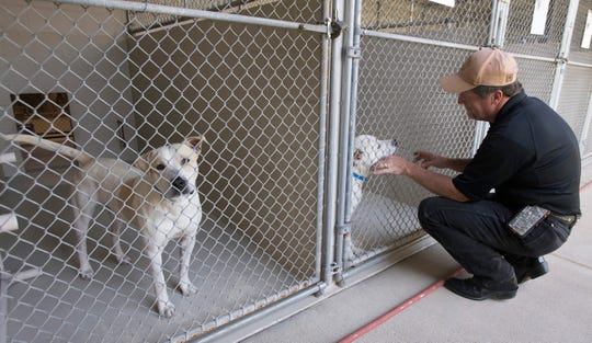 Santa Rosa County Animal Shelter Director Dale Hamilton checks on the health and well being of a group of dogs housed at the shelter on Tuesday, April 16, 2019. In March, the Santa Rosa animal shelter had its first month ever with no space-related euthanasia deaths.