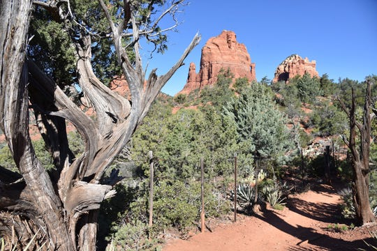 Sedona's Mitten Ridge formations seen from the Cibola Pass Trail.