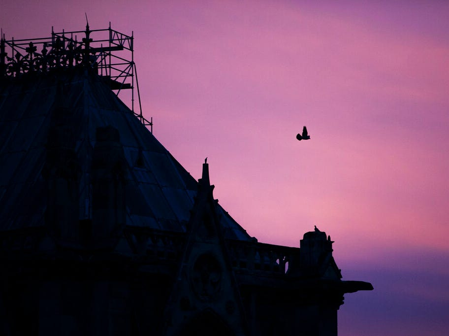 A pigeon flies over the Notre Dame cathedral, as she is seen on sunrise after the fire in Paris, Tuesday, April 16, 2019. A catastrophic fire engulfed the upper reaches of Paris' soaring Notre Dame Cathedral as it was undergoing renovations Monday, threatening one of the greatest architectural treasures of the Western world as tourists and Parisians looked on aghast from the streets below. (AP Photo/Kamil Zihnioglu)