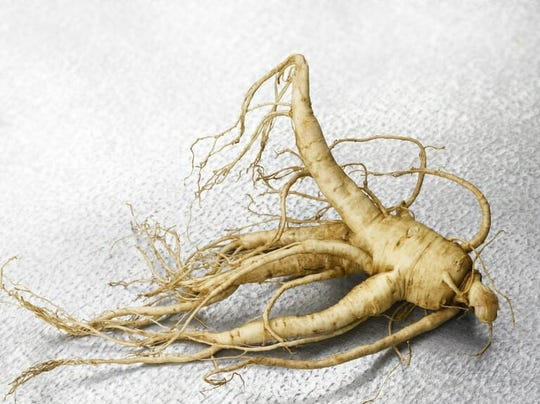 Wisconsin' ginseng growers can start exporting fresh (undried) to Taiwan if they can prove it does not contain a harmful nematode.