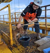 A dog found swimming more than 135 miles from shore by workers on an oil rig crew in the Gulf of Thailand has been returned safely to land. (April 16)
