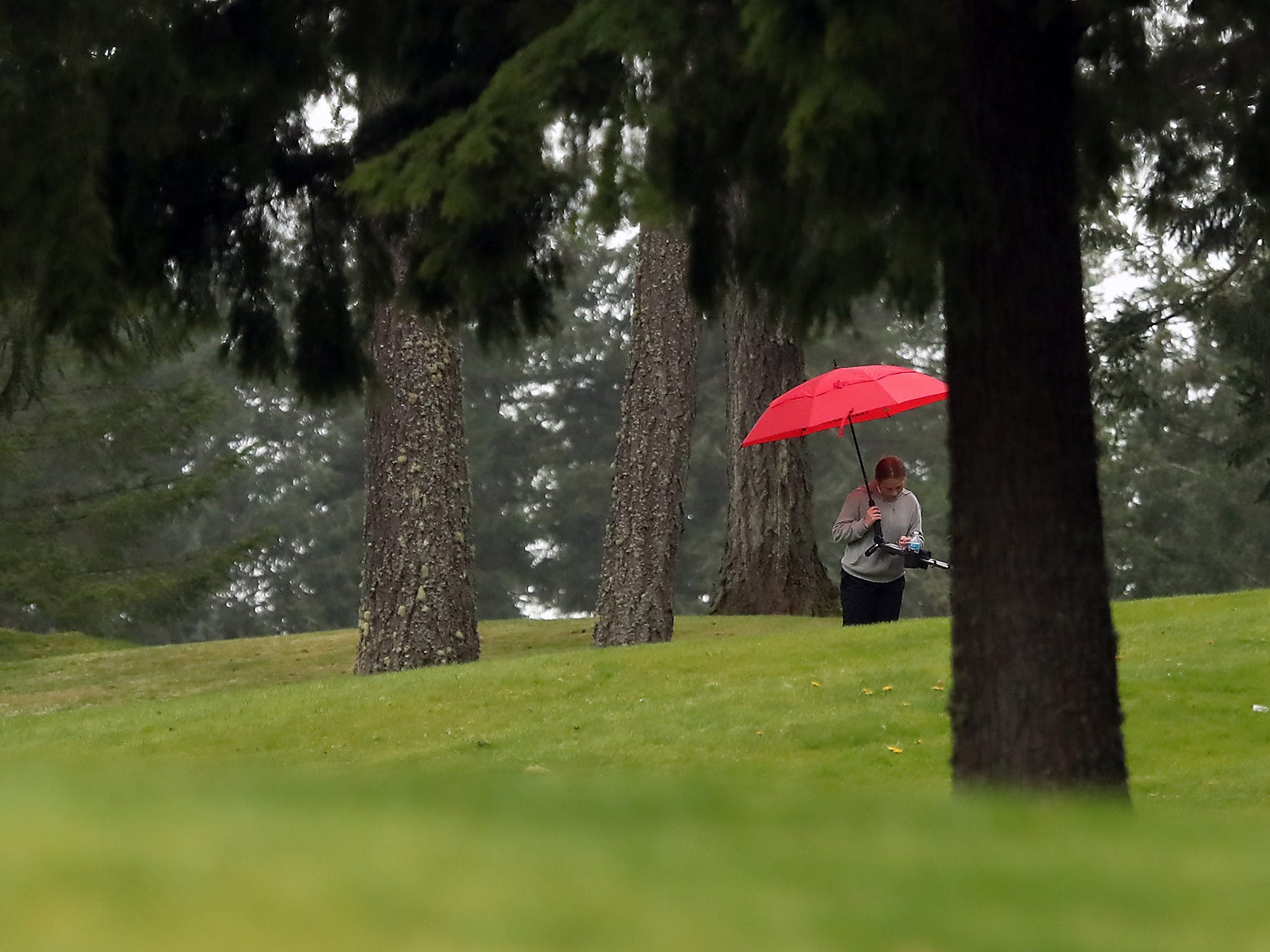 A golfer pauses among the trees to write down a score underneath her umbrella on Tuesday, April 16, 2019.