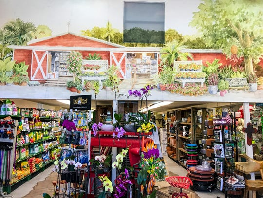 Golden Gate Nursery, a family owned and operated business running in Naples for more than 30 years. The Nursery was small at the beginning and was opened by a Cuban-American couple Ruben and Rosa Hernandez.  Thursday, April 11, 2019.