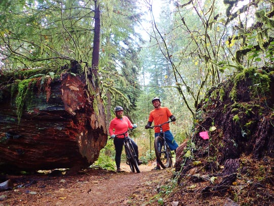 The mountain biking trails at Silver Falls State Park offer options for everyone from beginner to advanced level.