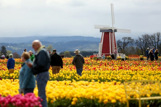 The Wooden Shoe Tulip Fest near Woodburn on April 17, 2019.