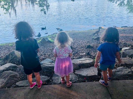 Kids enjoy gazing at the ducks during Food Truck Thursday.