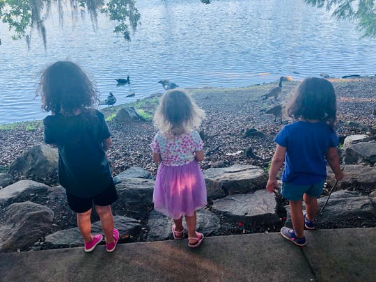 Kids enjoy gazing at the ducks during Food Truck Thursday.