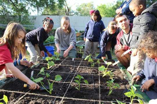 Students at Tallahassee School of Math and Science incorporate STEM concepts as they plant their spring garden with assistance from Damayan Garden Project volunteers and UF/IFAS Extension.