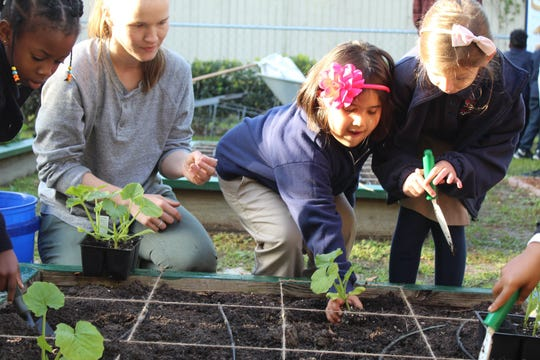 Through square foot gardening, youth at Tallahassee School of Math and Science discover math is part of the planting experience.