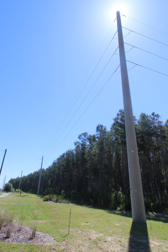 High-power transmission lines like this 115-foot, 74,900-pound concrete pole on Capital Circle Southeast could be strung from Columbia County to Jackson County through a NextEra Energy project causing heartburn in Leon and Jefferson counties.