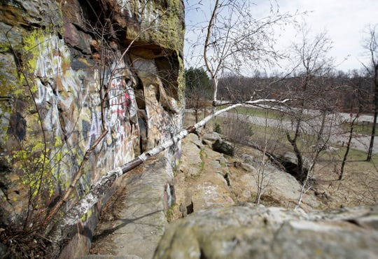 A tree grows from the rock near the base of Ship Rock on Tuesday, April 16, 2019, in Adams County, Wis.