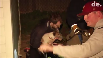 Firefighters used airbags to lift a shed to rescue a dog trapped underneath a shed Tuesday night.  Video provided by John J. Jankowski Jr.  4/17/19