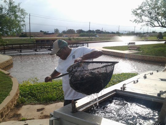 Greg Polk, a biologist from TPWD Dundee Fish Hatchery, stocks catfish at South Weeks Pond.