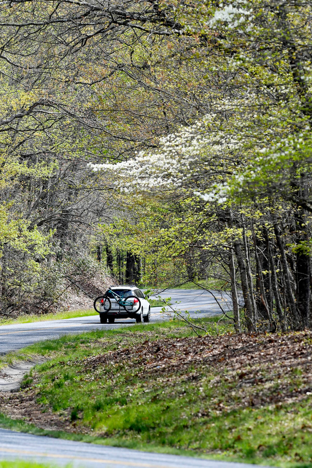 Third suicide in 2019 reported on Blue Ridge Parkway in