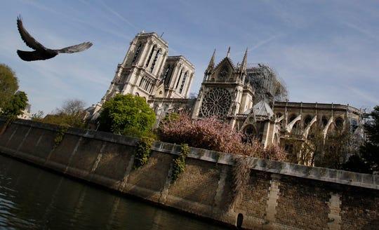 A bird flies past the Notre Dame Cathedral in Paris, Thursday, April 18, 2019.