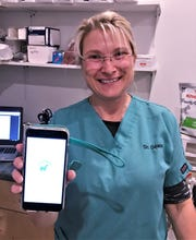 Elmira area veterinarian Mari Delaney created an app for quick reference on human foods and medications that are safe for pets.