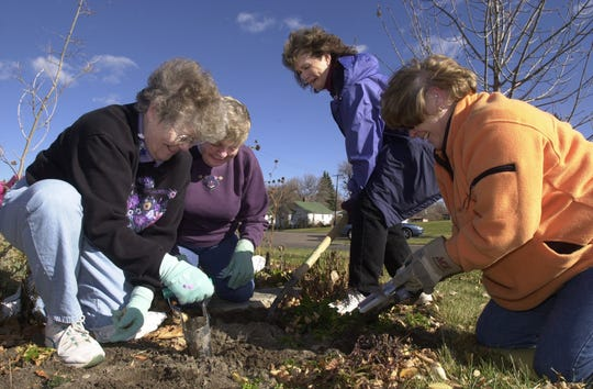 Members of the Great Falls Flower Growers plant tulip bulbs in the Butterfly Garden at Paris Gibson Square Thursday, Nov. 1, 2001. From left are Barb Tucker, Delores Gregory, Cheryl Hirose and Pat Eklund.