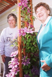Luana Maxwell, left, and Loretta Day, co-chairmen of Great Falls Flower Growers show, stand next to a clematis climbing vine.