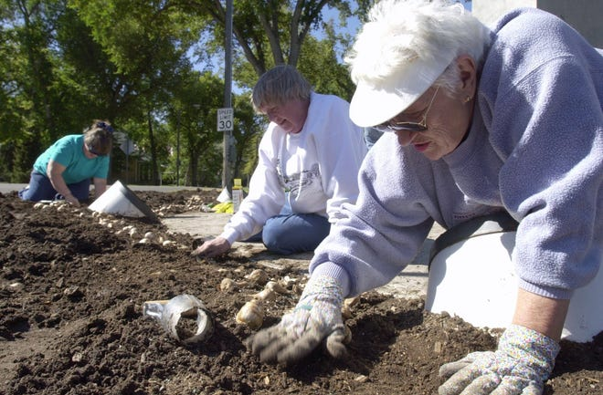 Loraine Littlefield, right, Marialyce Martin, center, and Patty Howse, members of Great Falls Flower Growers, plant bulbs around  the Paris Gibson statue in Gibson Park Thursday, Sept. 7, 2000. Shell Oil Co. provided funds for the 2,500 bulbs with matching labor or funding coming from the local garden club. Daffodils, tulips, irises and hyacinth are just some of the bulbs planted by the 10 garden club members.