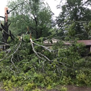 Hit hard. Electric cooperative calls for help after Thursday's storms