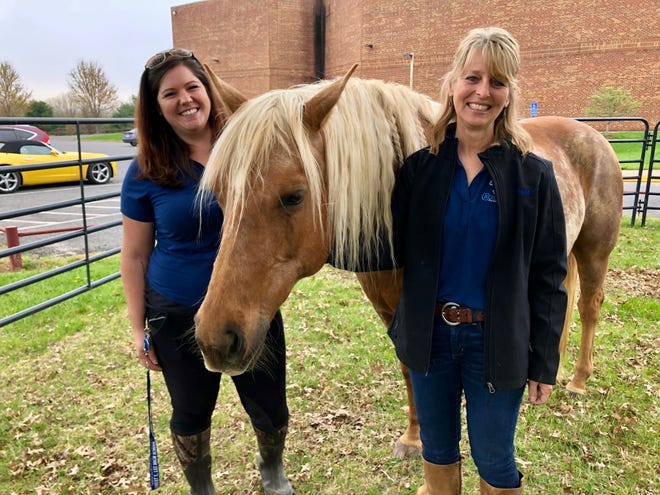 Cross Keys founder Alicia Burns and Austin Mikolin, who works at both Lee High School and Cross Keys, are running an equine-assisted psychotherapy program this spring.