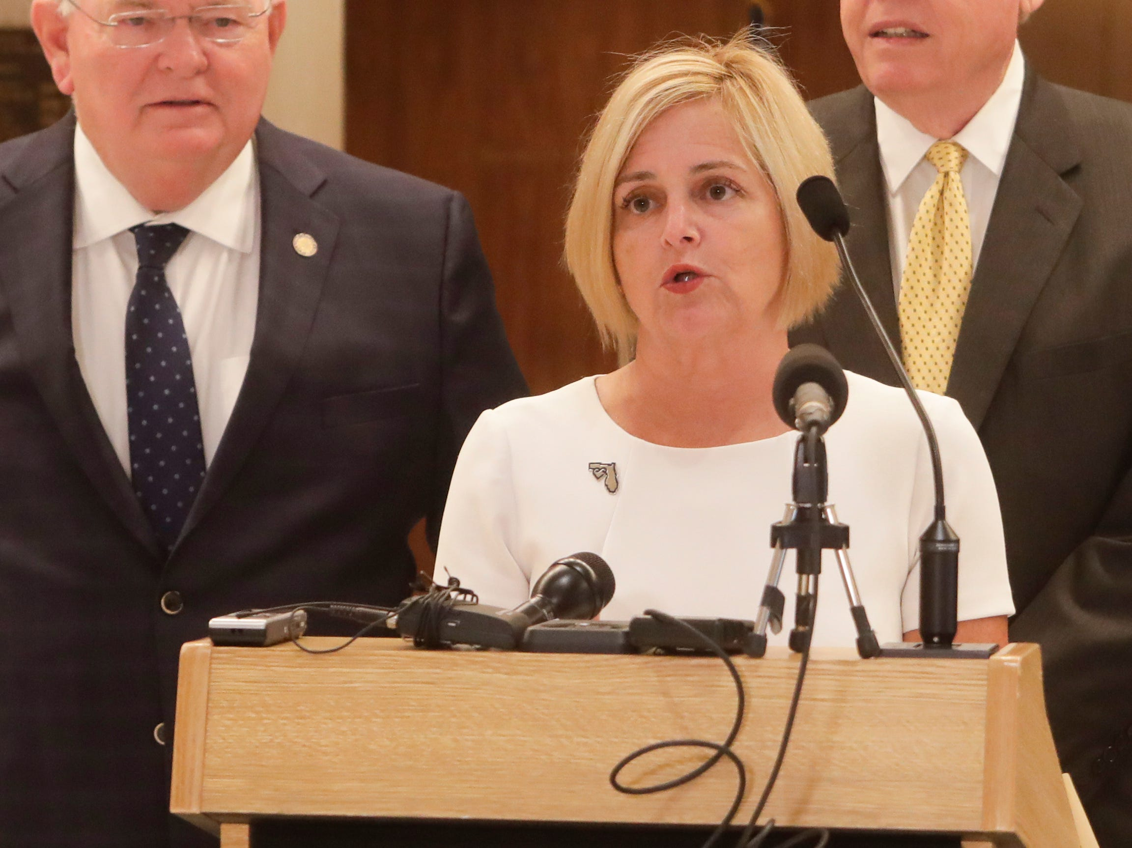 Rep. Loranne Ausley, D-Tallahassee, speaks during a news conference held to discuss state disaster relief funds with college sports coaches and lawmakers Thursday, April 18, 2019.