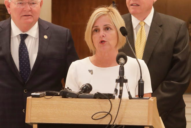 Rep. Loranne Ausley has represented Tallahassee in the state House of Representatives  since 2016
