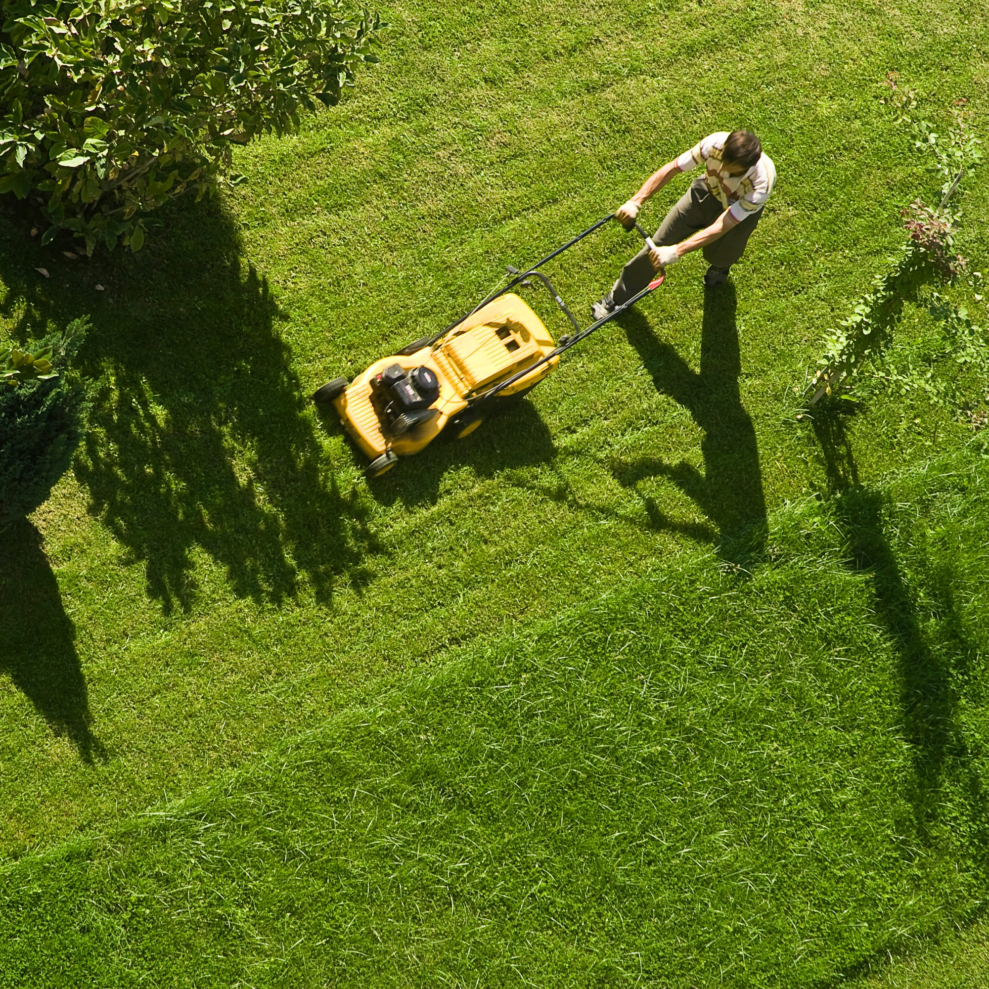 Why you should avoid raking grass clippings after mowing the lawn, and more mower taboos