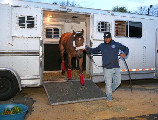 Russian Roulette was the first Thoroughbred to arrive to the Stable Area at Monmouth Park in Oceanport, New Jersey on Friday April 19, 2019, led by Assistant Trainer Tyree Wilson for his father, Trainer Tony Wilson.  Russian Roulette arrived from Tampa, Florida and will be preparing for Monmouth Park's 74th season of racing which begins on Saturday May 4, 2019.