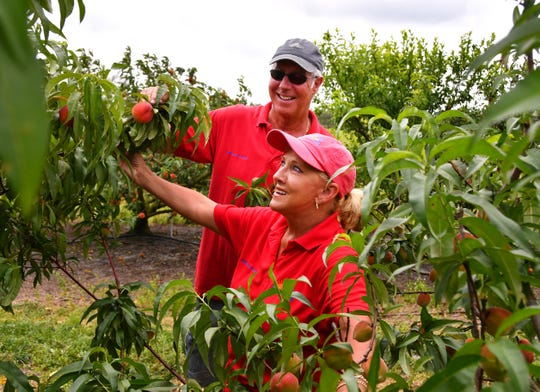 Ken and Alise Edison own Deer Park Peaches, which is open weekends in April and May for people to pick their own fruit.