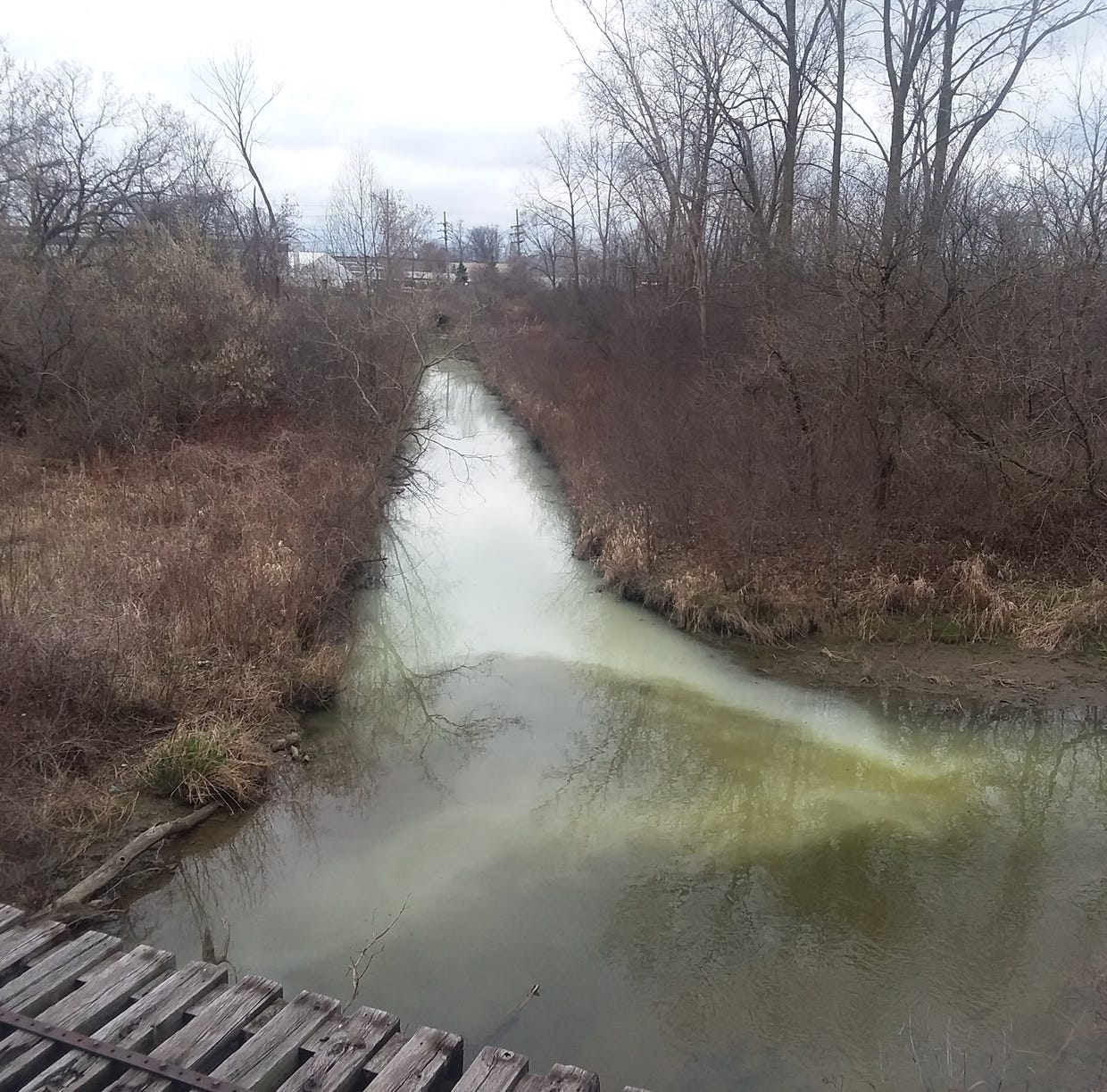 Strange, milky substance found in Sterling Heights drain