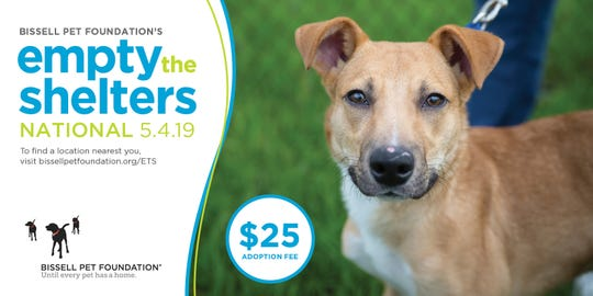 The BISSELL Pet Foundation's Empty the Shelters Event is set for May 4, 2019.
