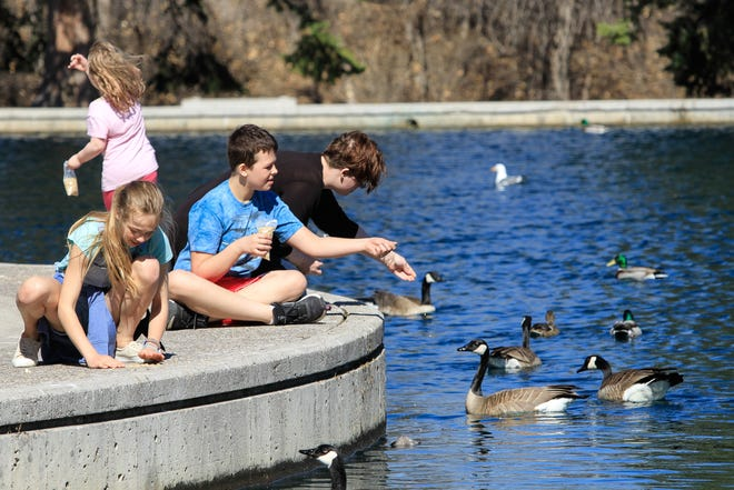 Gibson Pond was filled with sunshine and lots of people feeding the geese earlier this month. The park will likely be equally filled this weekend with temperatures forecast to rise past the mid-80s