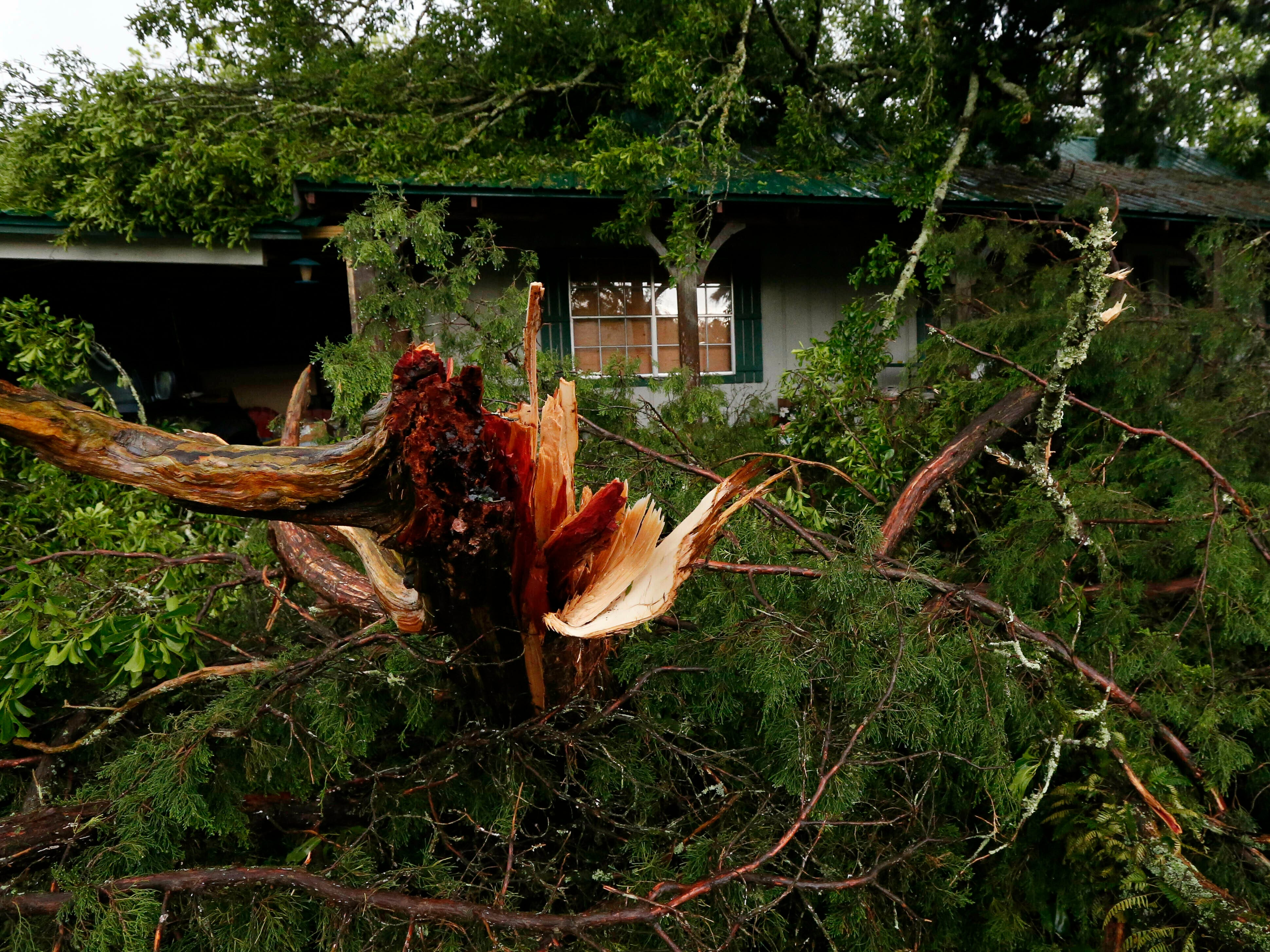 Ripped tree branches litter a Learned, Miss., home, following severe weather that hit the small community, Thursday, April 18, 2019. Several homes were damaged by fallen trees in the tree lined community. Strong storms again roared across the South on Thursday, topping trees and leaving more than 100,000 people without power across Mississippi, Louisiana and Texas.