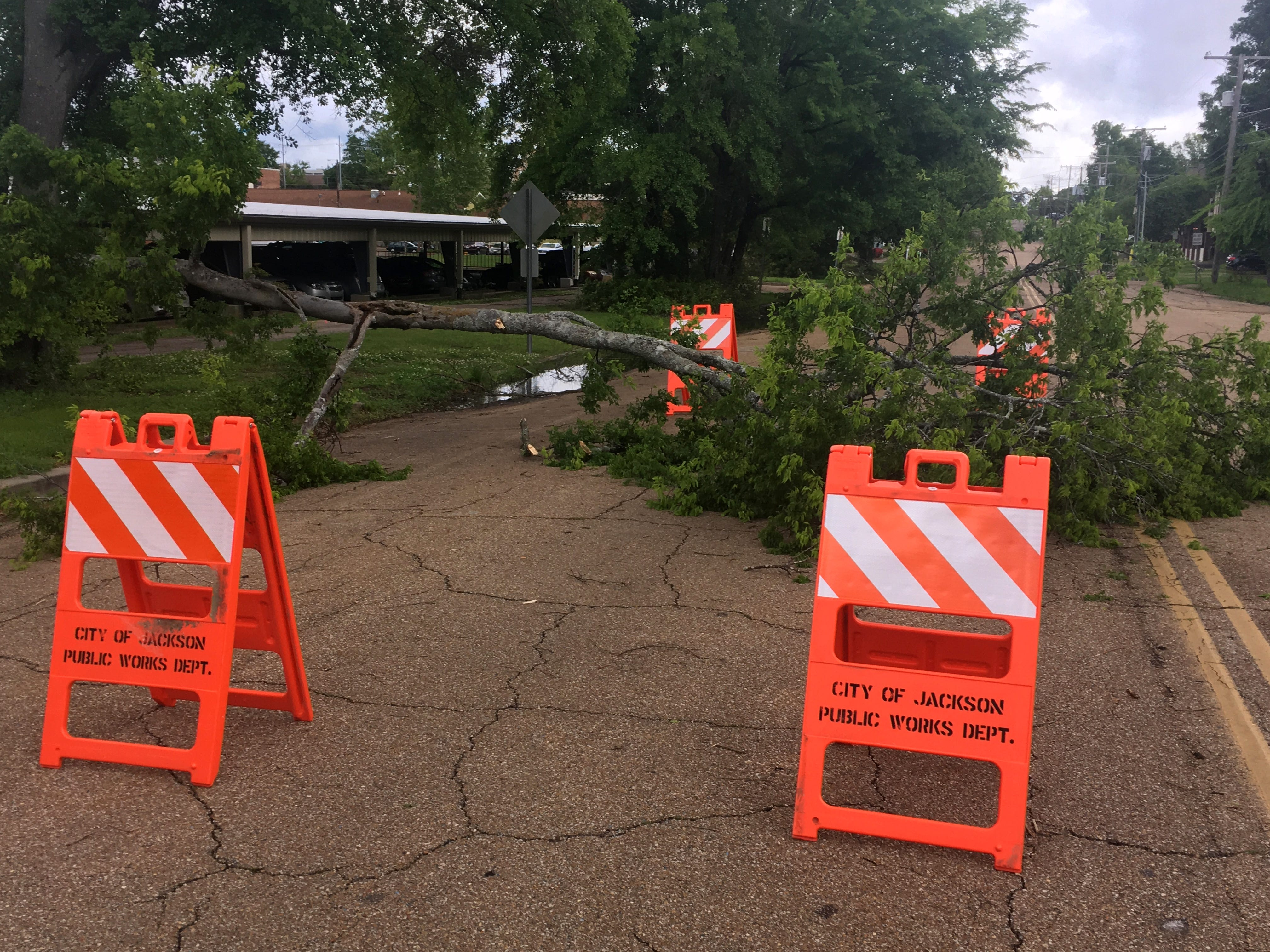 A downed tree lies across Jefferson Street in Jackson, Miss. after a strong storms hit the state Thursday.