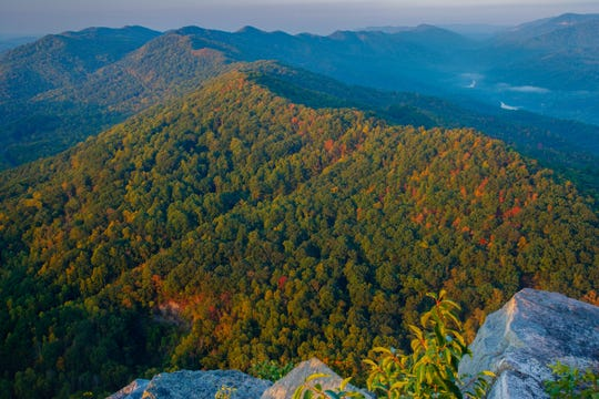 The Nature Conservancy has acquired 100,000 acres. The massive area covers 156 square miles, scattered across northern Tennessee (Claiborne and Campbell counties) and southern Kentucky (Bell, Knox and Leslie counties).
