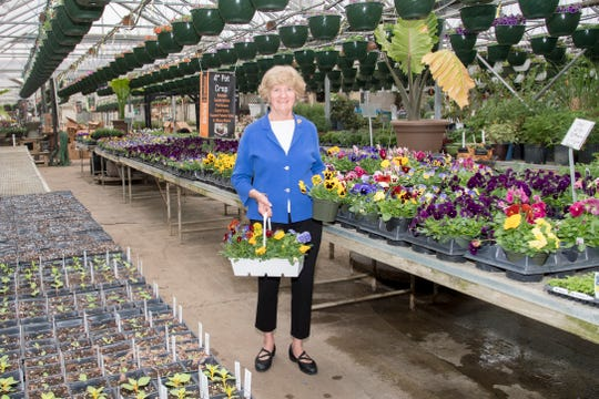 Pam Siegenthaler,a member of the Mansfield in Bloom steering committee, serves as the lead person for the floral efforts and beautification in downtown Mansfield.