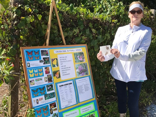 Gerry Richards next to a display showing types of butterflies and the life cycle of a Monarch butterfly, where she is allowing her butterfly to warm in the sun before releasing it.