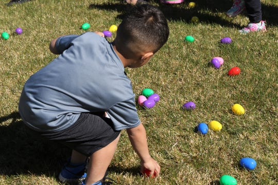 A child collects eggs, Friday, April 19, 2019, during Easter EGGStravaganza at Sycamore Park.