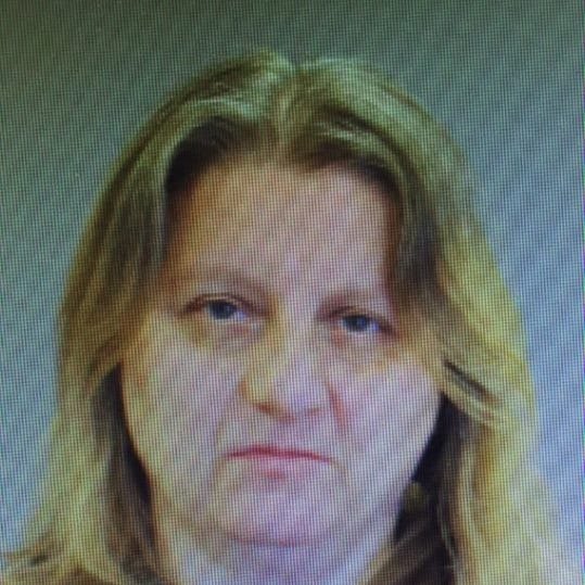 Catskill woman arrested in Red Hook in possession of 155 hydrocodone pills: Police