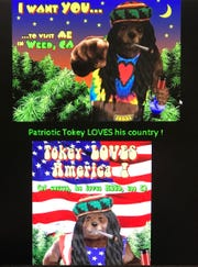 """This picture shows the website for """"Tokey the Bear,"""" which Weed resident Jim Striegel wants to turn into a sort of town mascot."""