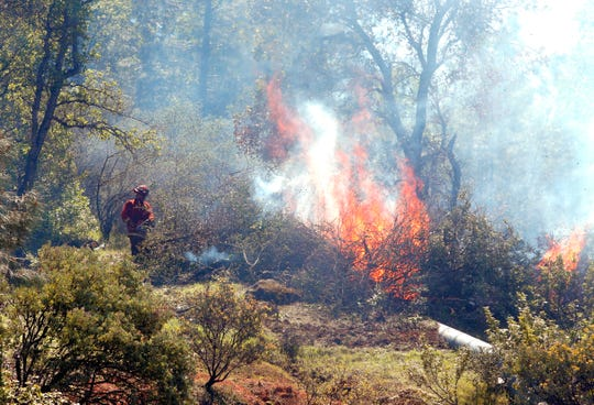 A crew from the Sugar Pine Conservation Camp burns brush on a hillside above Eureka Way as part of a fuel-reduction and thinning project in west Redding on Thursday, April 18, 2019.