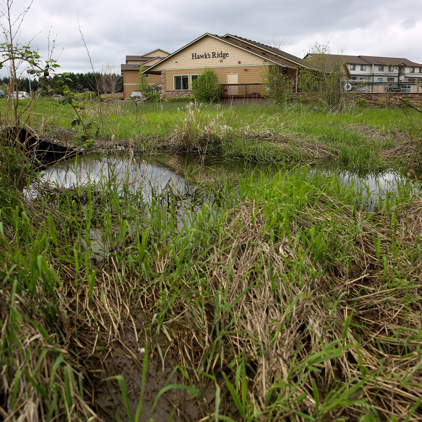 Developers eye wetlands as Oregon cities run out of buildable land