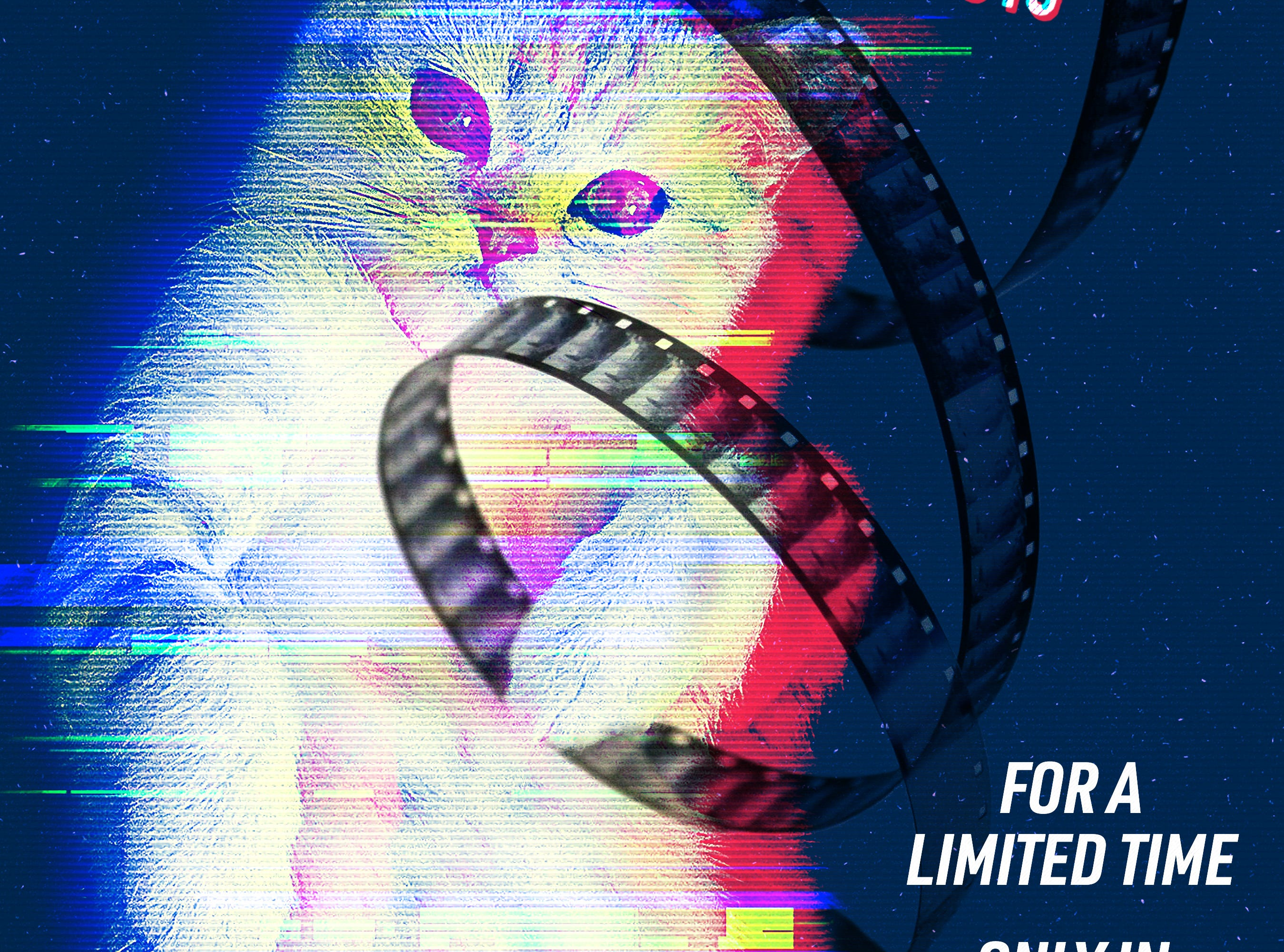 CatVideoFest 2019: A compilation of cat videos curated from submissions, music videos, animations and online content benefiting cats in need all over the world through partnerships with local cat charities/other organizations, 12:30 p.m. Sunday and 7:15 p.m. Monday, April 28-29, Salem Cinema, 1127 Broadway St. NE. $12 in advance, $15 day of; 10 percent of the proceeds will go to the Willamette Humane Society and Salem Friends of Felines. https://bit.ly/2IM6ksO.