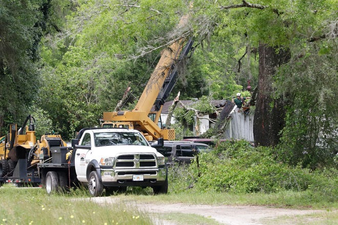 A crew work to remove the large branch that killed an 8-year-old girl in her Woodville home during a storm Friday morning, April 19, 2019.